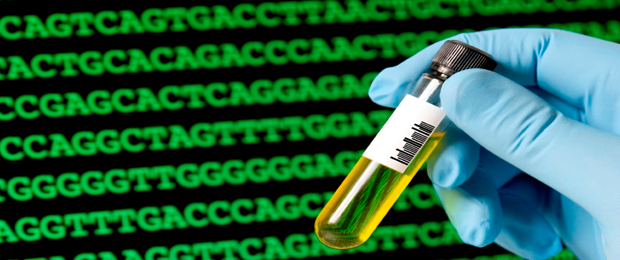 an analysis of the germline gene engineering We employed next generation sequencing to analyze ig germline v and j gene  chemical engineering,  comparative analysis of the rabbit immunoglobulin.